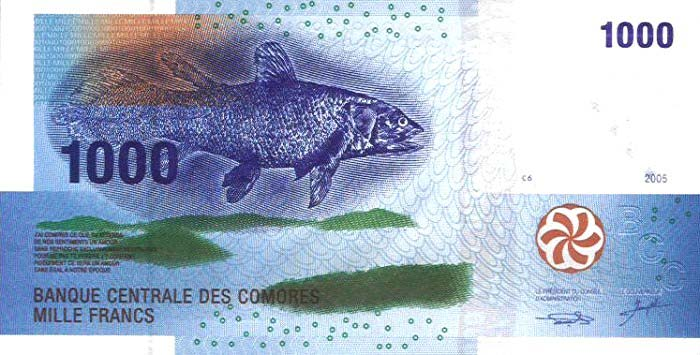 Comoros 1000 Frank note