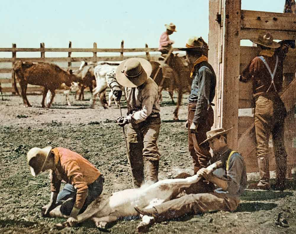 authentic cowboy photograph