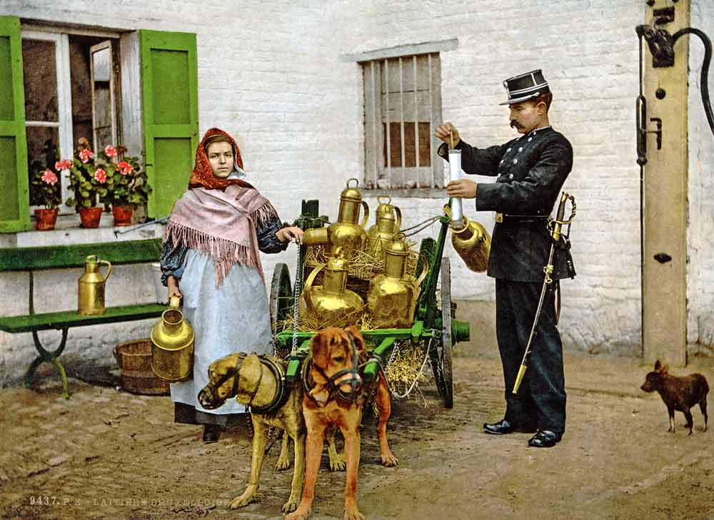 Old postcard of a milk seller in Brussels