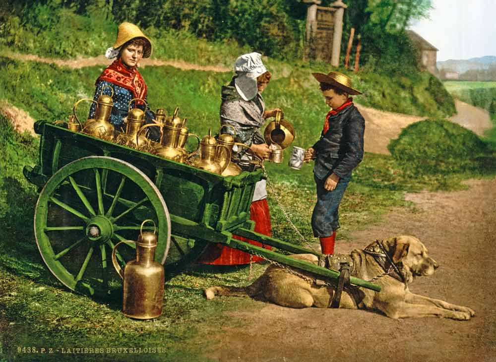 Old postcard of girls selling milk