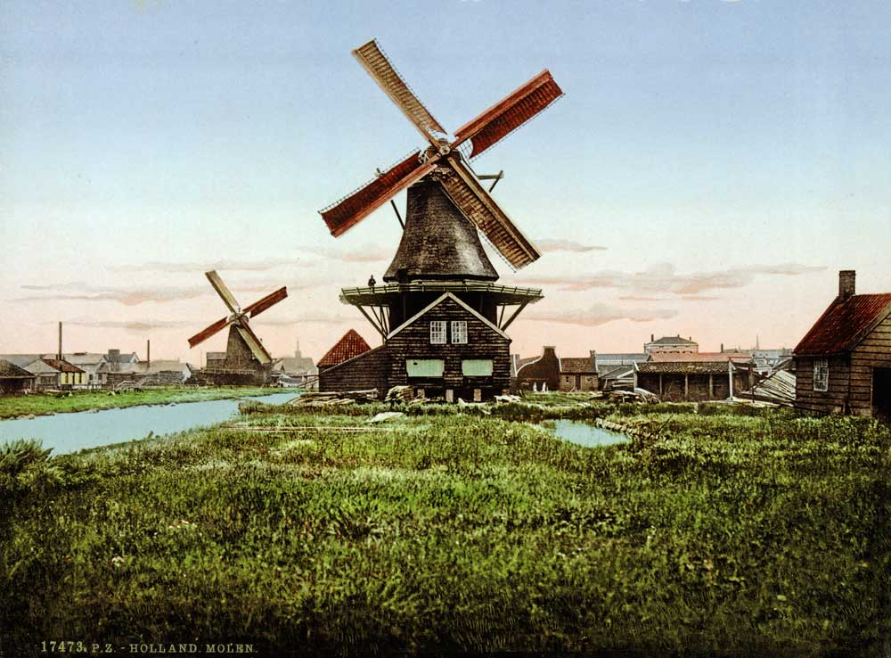 Old postcard showing Dutch windmills