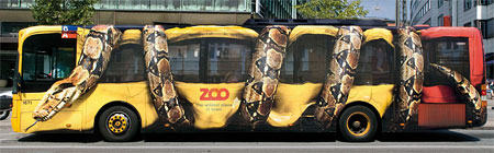 Wrap advertising on a bus - Copenhagen Zoo