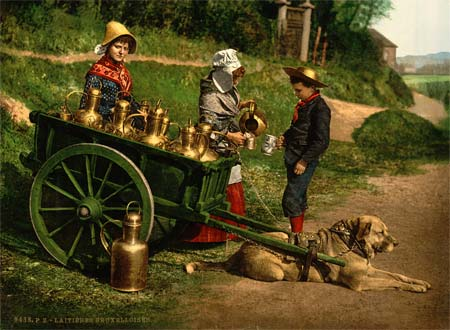 A postcard of a dog cart near Brussels, Belgium - created using the Aac process