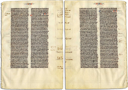 vellum used for medieval bible